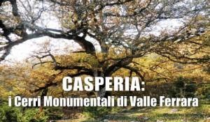 CASPERIA-CERRI-COVER